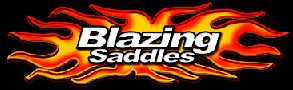 www.blazingsaddles.co.uk